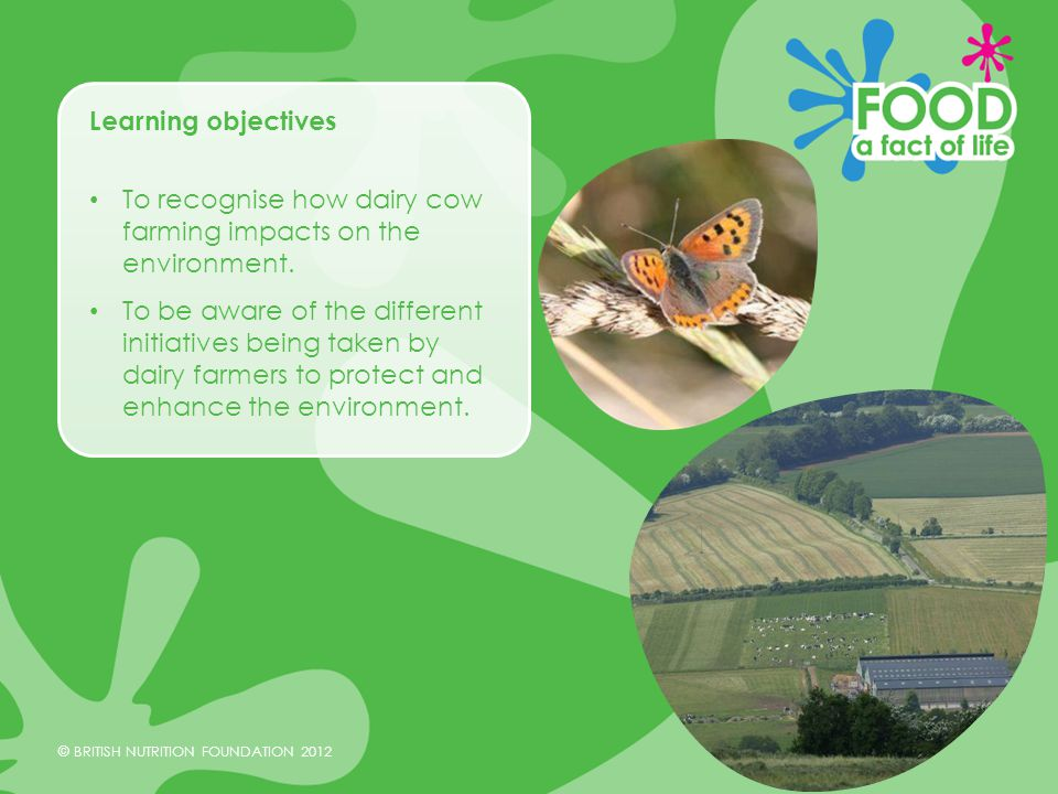 © BRITISH NUTRITION FOUNDATION 2012 Methane emissions When cows chew and digest food they burp and emit methane(CH 4 ).