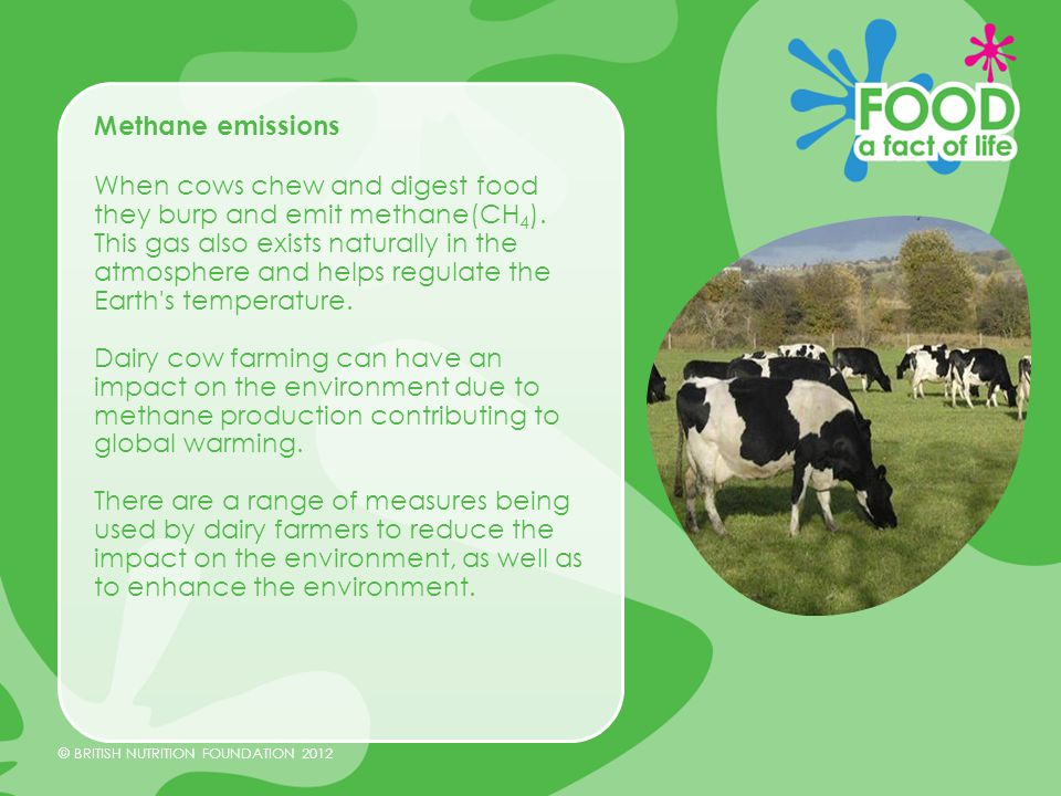 © BRITISH NUTRITION FOUNDATION 2012 Reduction in methane emissions Dairy farmers have worked hard to reduce their environmental impact.