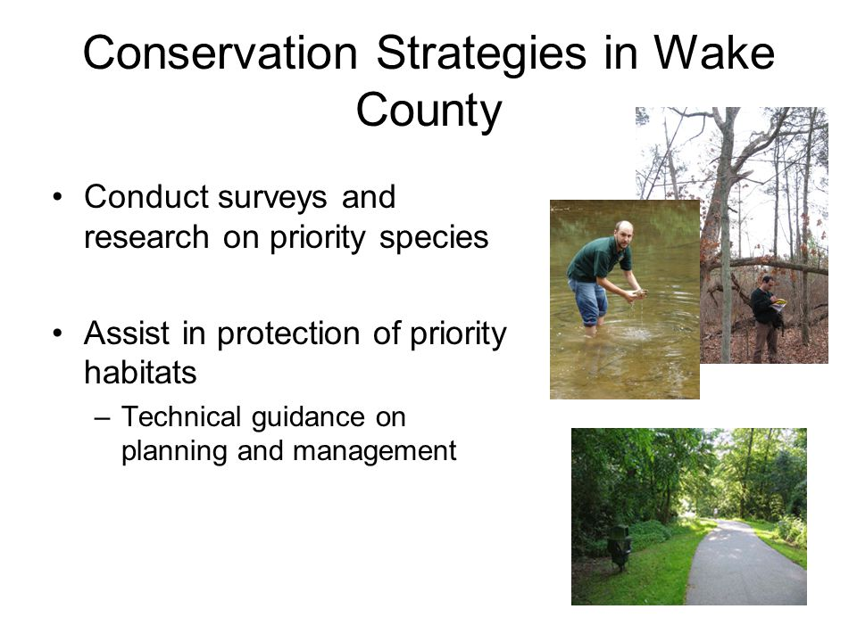How is Wake Nature using the WAP.