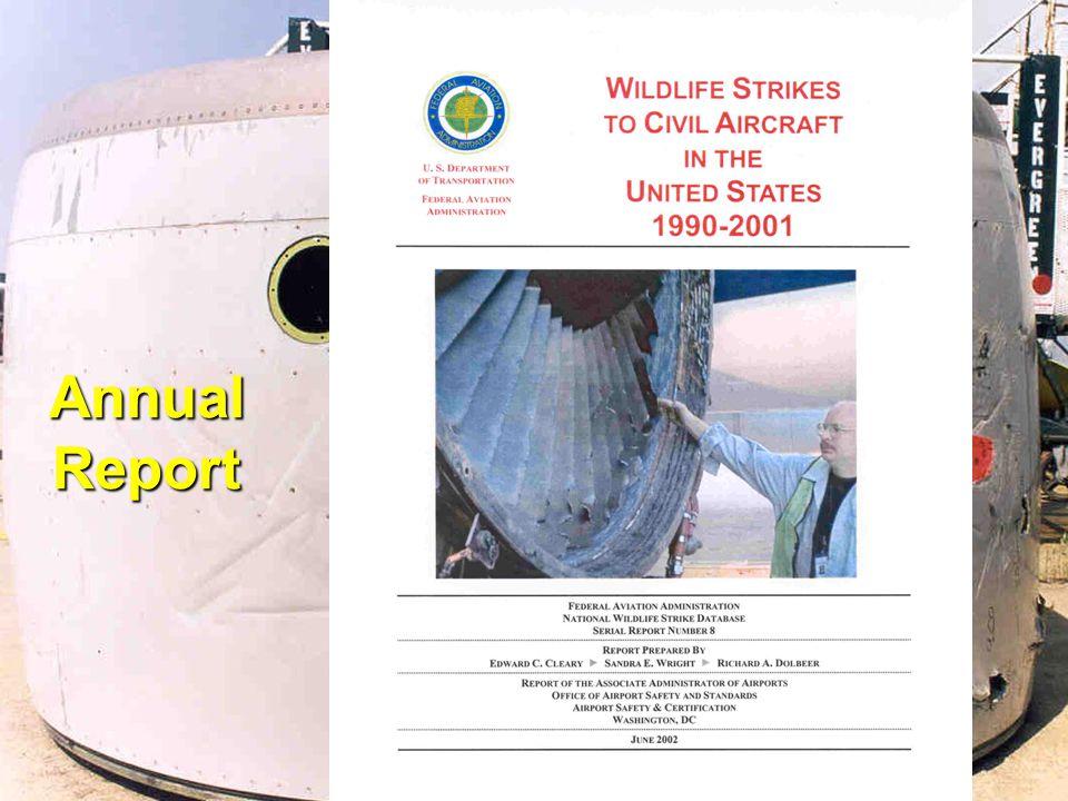 11 Annual Report
