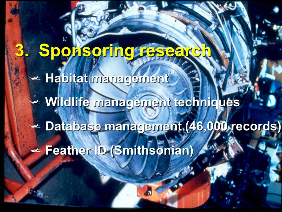 13 3. Sponsoring research  Habitat management  Wildlife management techniques  Database management (46,000 records)  Feather ID (Smithsonian)
