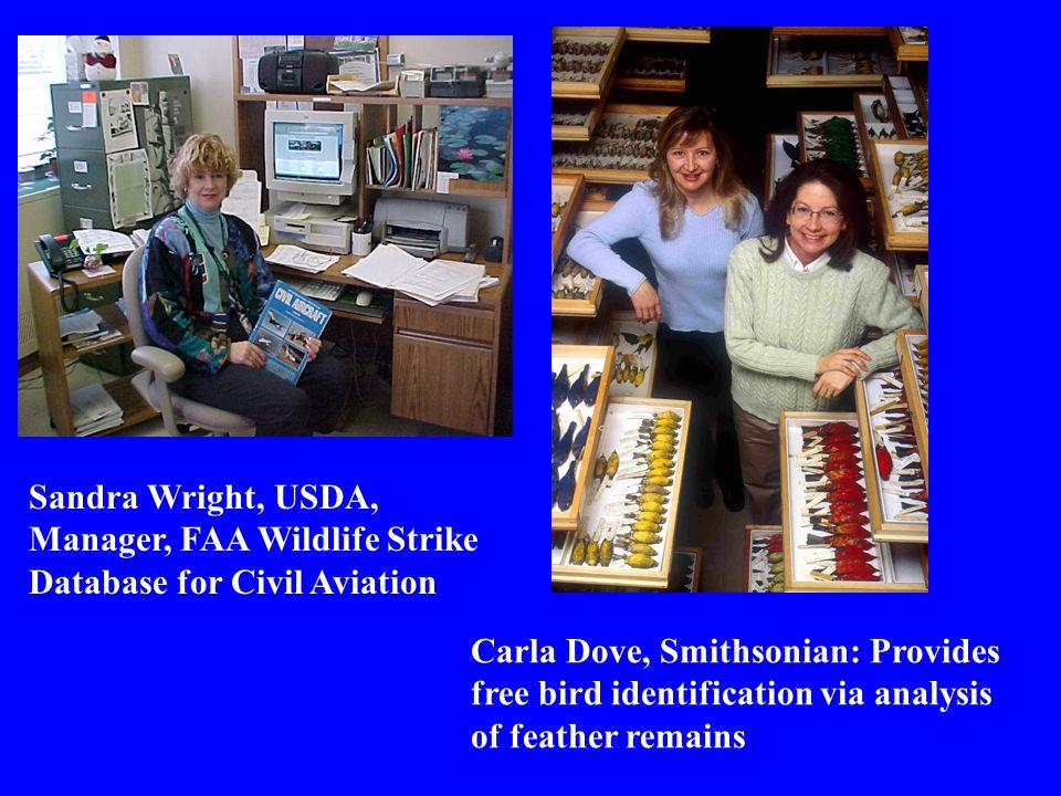 Sandra Wright, USDA, Manager, FAA Wildlife Strike Database for Civil Aviation Carla Dove, Smithsonian: Provides free bird identification via analysis of feather remains Sandra Wright, USDA, Manager, FAA Wildlife Strike Database for Civil Aviation