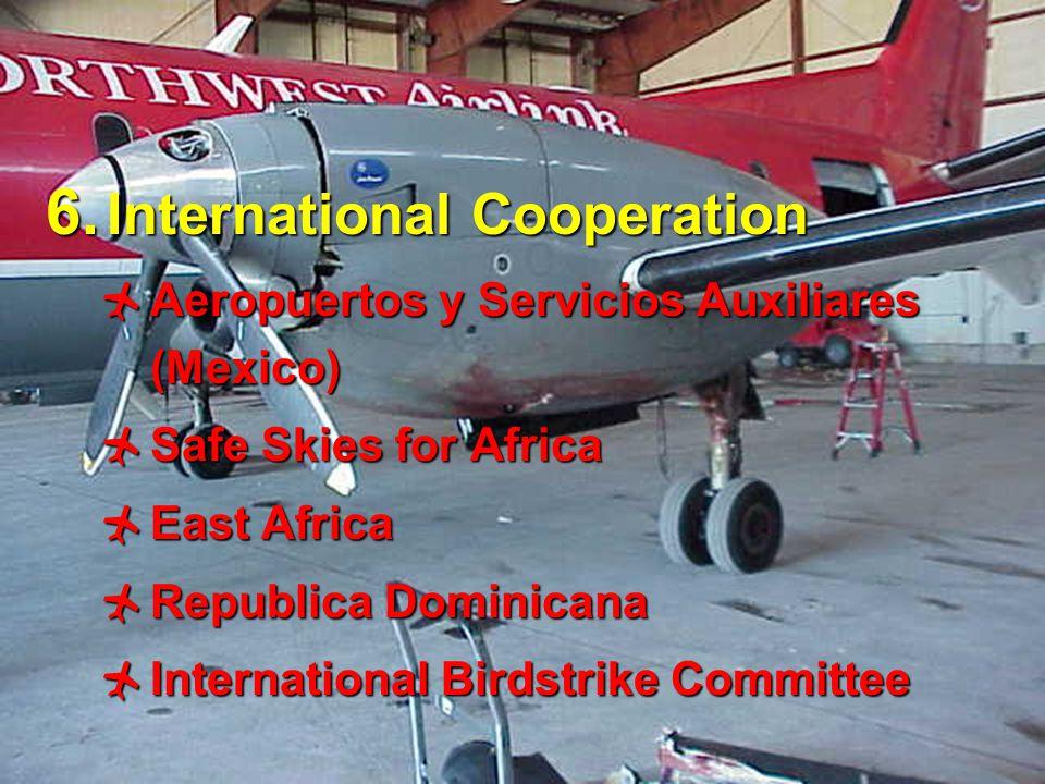 16 6. International Cooperation  Aeropuertos y Servicios Auxiliares (Mexico)  Safe Skies for Africa  East Africa  Republica Dominicana  Internati