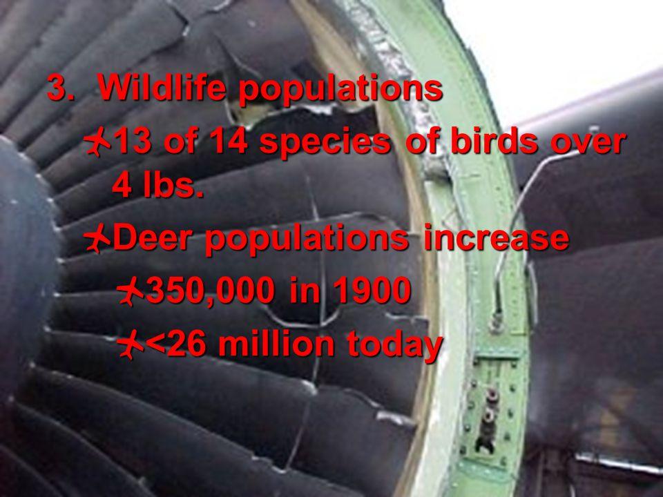 3 3. Wildlife populations  13 of 14 species of birds over 4 lbs.  Deer populations increase  350,000 in 1900  <26 million today