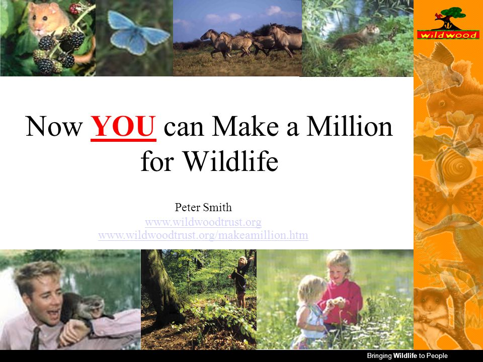 Now YOU can Make a Million for Wildlife Peter Smith www.wildwoodtrust.org www.wildwoodtrust.org/makeamillion.htm