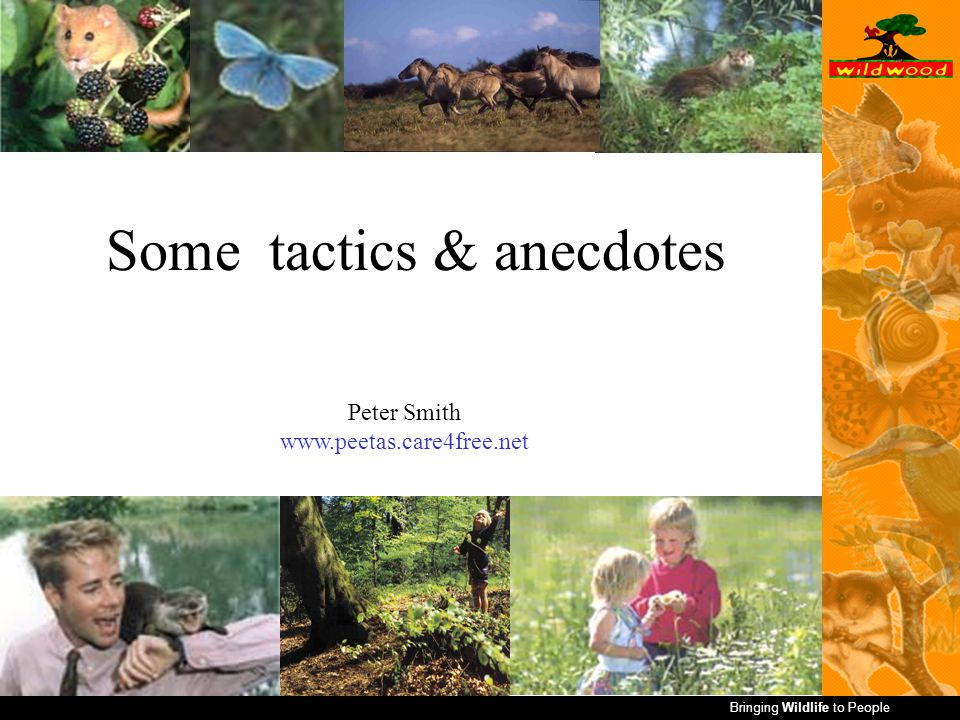 Bringing Wildlife to People Some tactics & anecdotes Peter Smith www.peetas.care4free.net