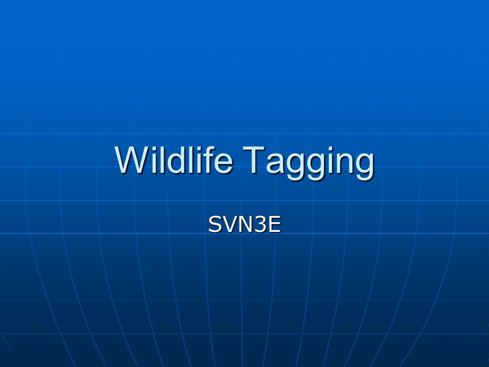 Wildlife Tagging SVN3E