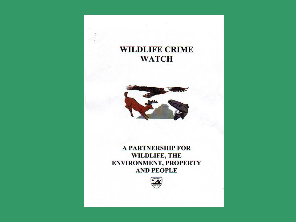 Why Wildlife Crime Watch.