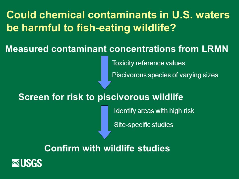 Measured contaminant concentrations from LRMN Screen for risk to piscivorous wildlife Confirm with wildlife studies Toxicity reference values Piscivorous species of varying sizes Identify areas with high risk Site-specific studies Could chemical contaminants in U.S.