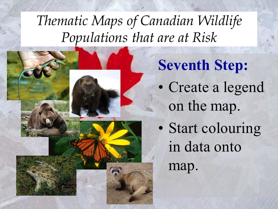 Thematic Maps of Canadian Wildlife Populations that are at Risk Seventh Step: Create a legend on the map.