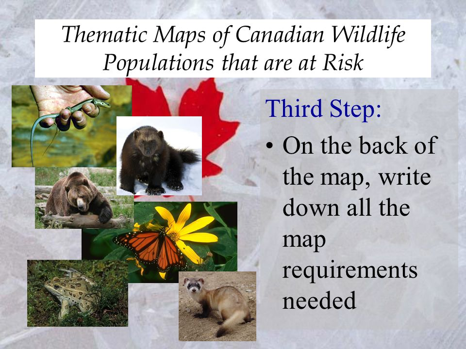 Thematic Maps of Canadian Wildlife Populations that are at Risk Third Step: On the back of the map, write down all the map requirements needed