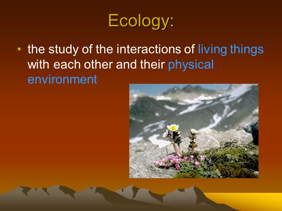 Ecology: the study of the interactions of living things with each other and their physical environment