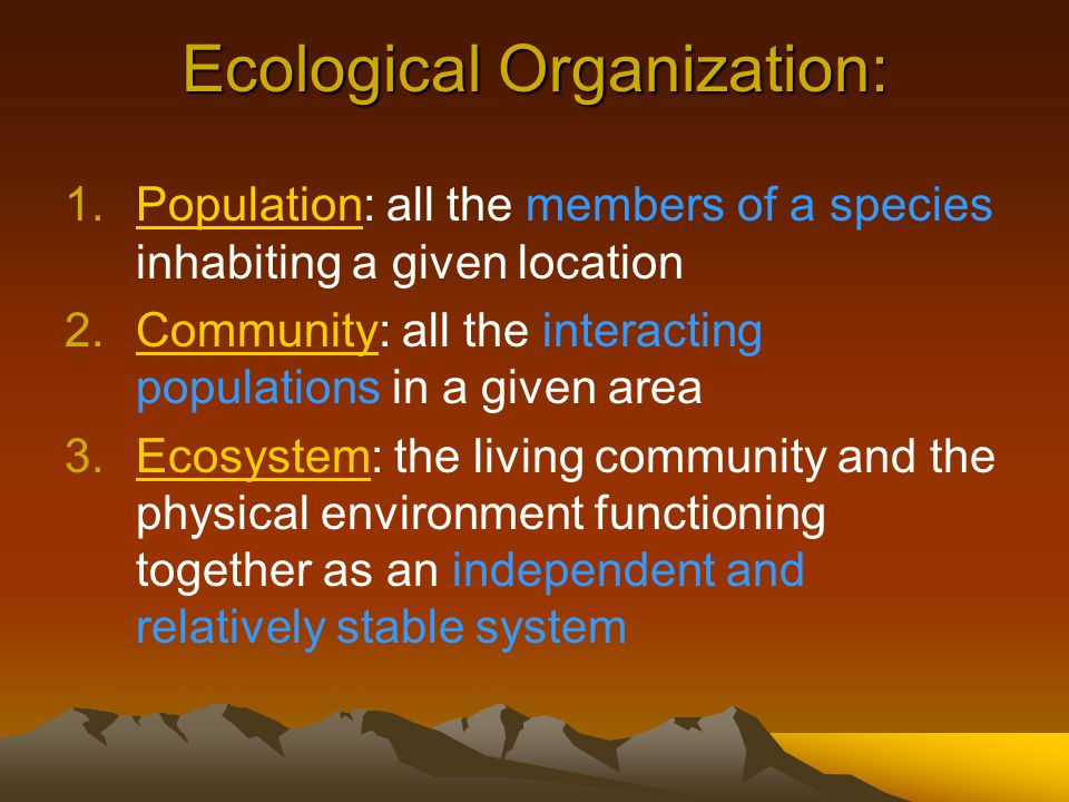 Ecological Organization: 1.Population: all the members of a species inhabiting a given location 2.Community: all the interacting populations in a given area 3.Ecosystem: the living community and the physical environment functioning together as an independent and relatively stable system