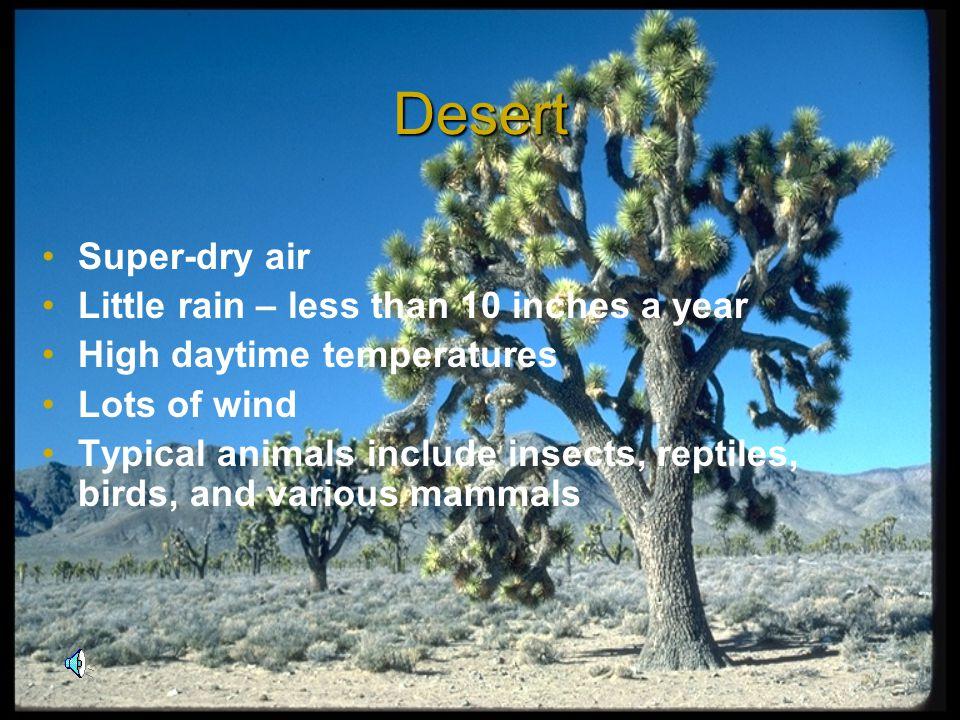 Which habitats do you recognize? Desert Rain Forest Tundra Prairie Grassland Forest Marine Zoo