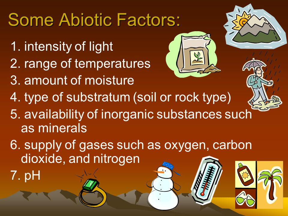 Abiotic factors: those physical and chemical factors which affect the ability of organisms to survive and reproduce