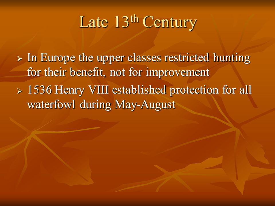 Late 13 th Century  In Europe the upper classes restricted hunting for their benefit, not for improvement  1536 Henry VIII established protection fo