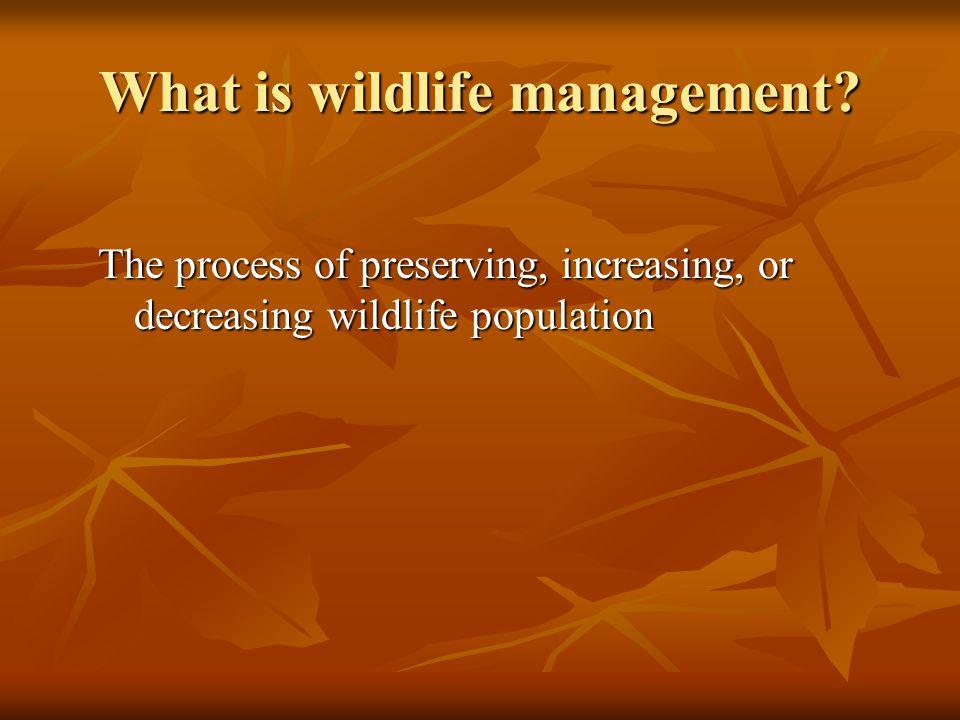 Preservation restocking, predator control, habitat improvement, game refuges, and restrictive laws.