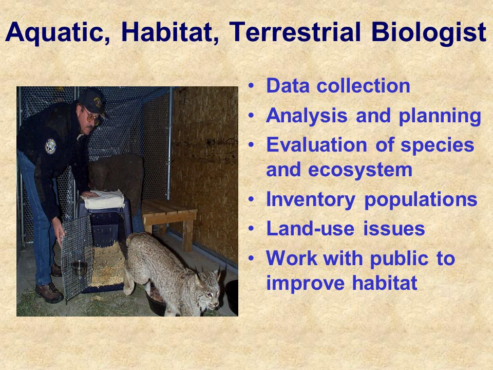 Aquatic, Habitat, Terrestrial Biologist Data collection Analysis and planning Evaluation of species and ecosystem Inventory populations Land-use issues Work with public to improve habitat