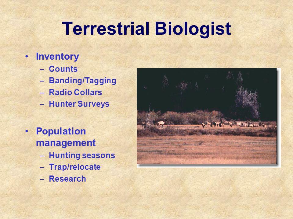 Terrestrial Biologist Inventory –Counts –Banding/Tagging –Radio Collars –Hunter Surveys Population management –Hunting seasons –Trap/relocate –Researc