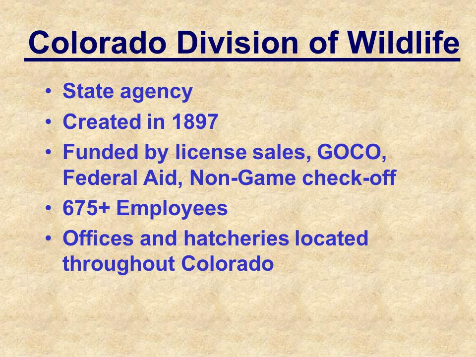 Colorado Division of Wildlife State agency Created in 1897 Funded by license sales, GOCO, Federal Aid, Non-Game check-off 675+ Employees Offices and h