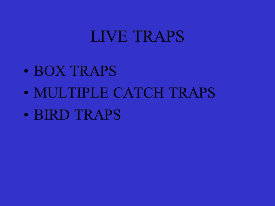 LIVE TRAPS BOX TRAPS MULTIPLE CATCH TRAPS BIRD TRAPS