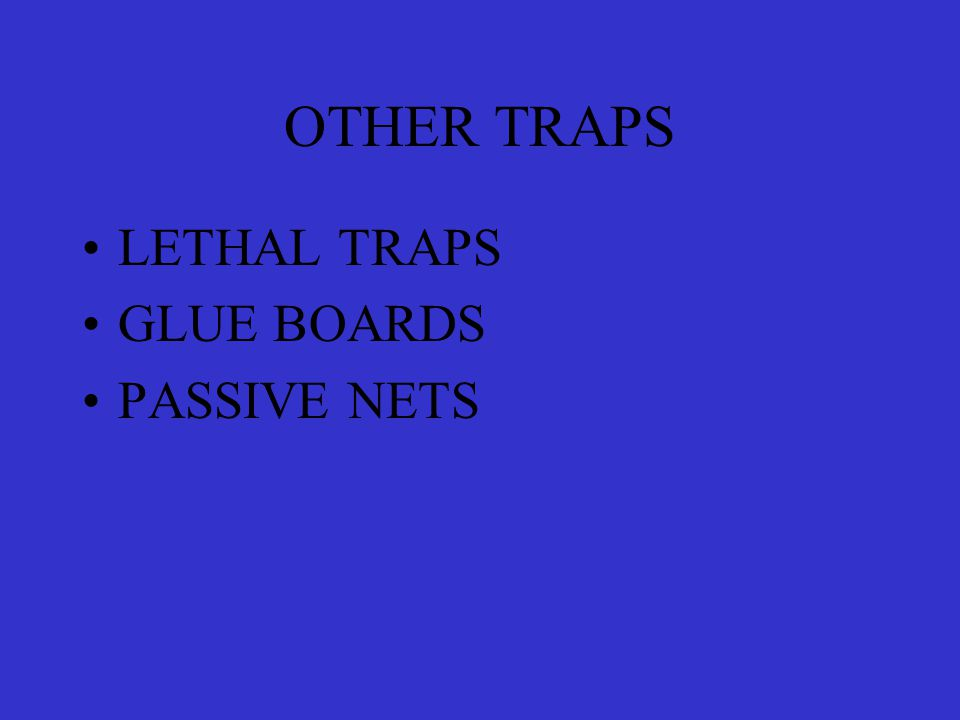 OTHER TRAPS LETHAL TRAPS GLUE BOARDS PASSIVE NETS