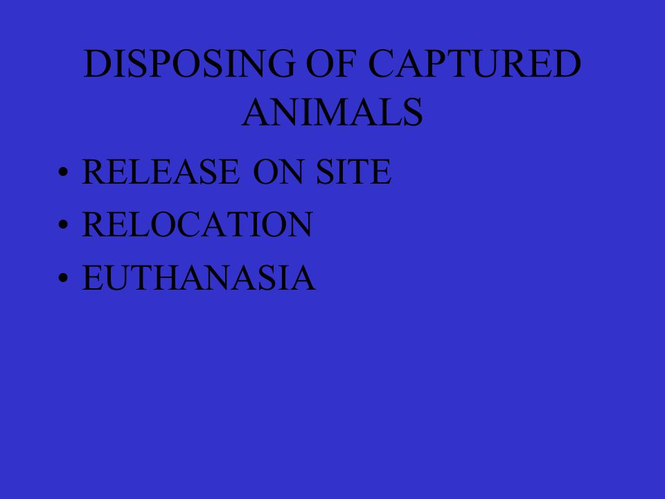 DISPOSING OF CAPTURED ANIMALS RELEASE ON SITE RELOCATION EUTHANASIA