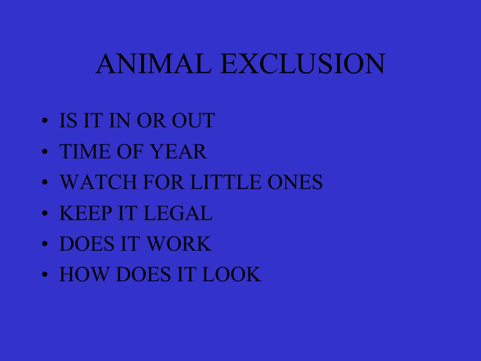 ANIMAL EXCLUSION IS IT IN OR OUT TIME OF YEAR WATCH FOR LITTLE ONES KEEP IT LEGAL DOES IT WORK HOW DOES IT LOOK