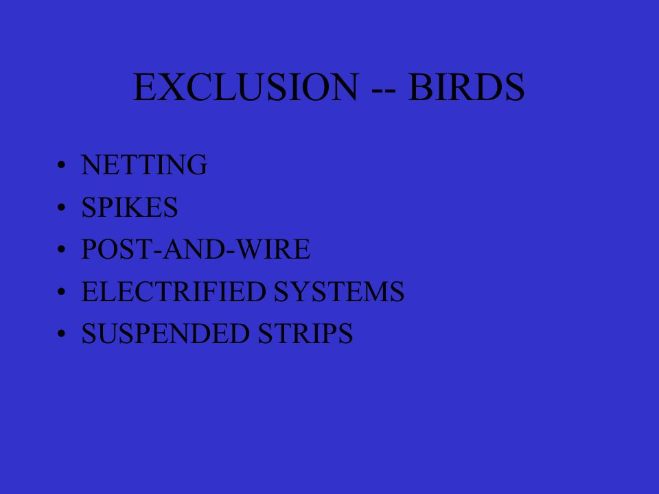EXCLUSION -- BIRDS NETTING SPIKES POST-AND-WIRE ELECTRIFIED SYSTEMS SUSPENDED STRIPS