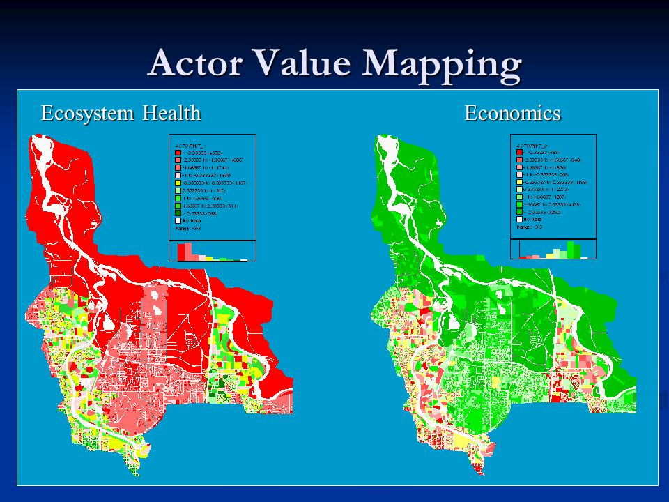 Actor Value Mapping Ecosystem Health Economics