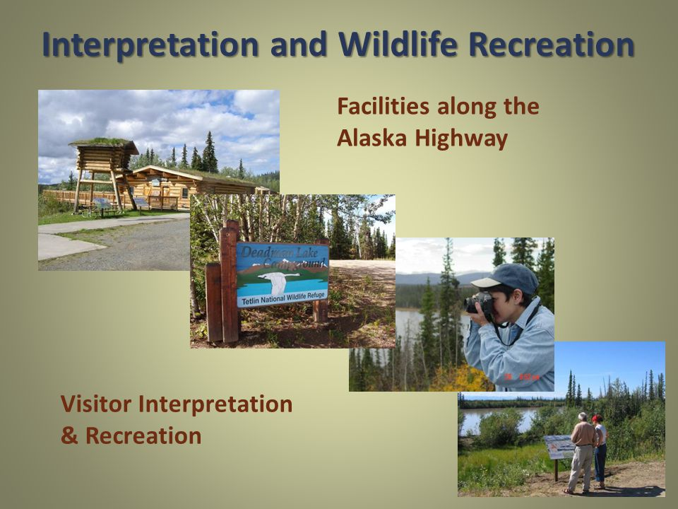Facilities along the Alaska Highway Visitor Interpretation & Recreation Interpretation and Wildlife Recreation