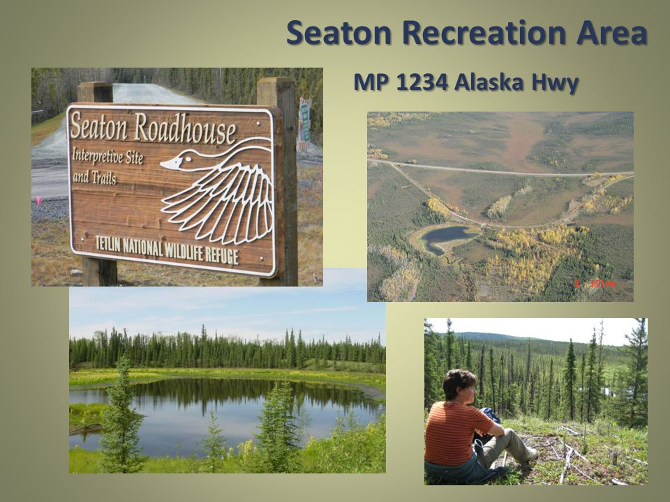 Seaton Recreation Area MP 1234 Alaska Hwy
