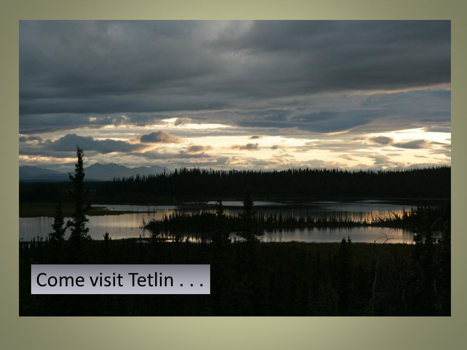 Come visit Tetlin...