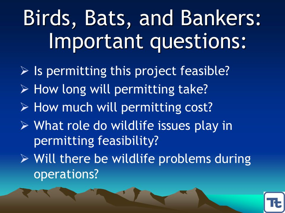 Birds, Bats, and Bankers: Important questions:  Is permitting this project feasible?  How long will permitting take?  How much will permitting cost