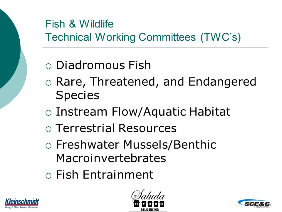 Fish & Wildlife Technical Working Committees (TWC's)  Diadromous Fish  Rare, Threatened, and Endangered Species  Instream Flow/Aquatic Habitat  Terrestrial Resources  Freshwater Mussels/Benthic Macroinvertebrates  Fish Entrainment