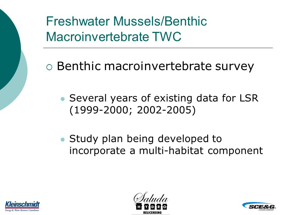 Freshwater Mussels/Benthic Macroinvertebrate TWC  Benthic macroinvertebrate survey Several years of existing data for LSR (1999-2000; 2002-2005) Study plan being developed to incorporate a multi-habitat component