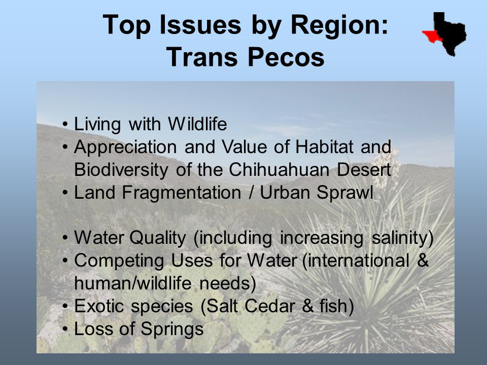 Top Issues by Region: Trans Pecos Living with Wildlife Appreciation and Value of Habitat and Biodiversity of the Chihuahuan Desert Land Fragmentation / Urban Sprawl Water Quality (including increasing salinity) Competing Uses for Water (international & human/wildlife needs) Exotic species (Salt Cedar & fish) Loss of Springs