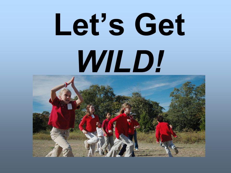 Let's Get WILD!