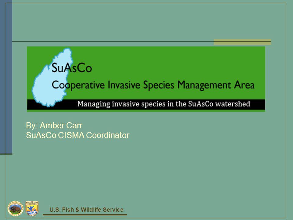 U.S. Fish & Wildlife Service By: Amber Carr SuAsCo CISMA Coordinator