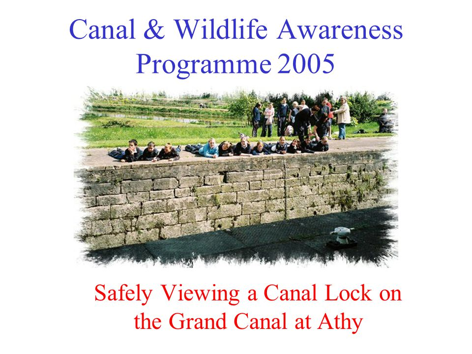 Canal & Wildlife Awareness Programme 2005 Safely Viewing a Canal Lock on the Grand Canal at Athy