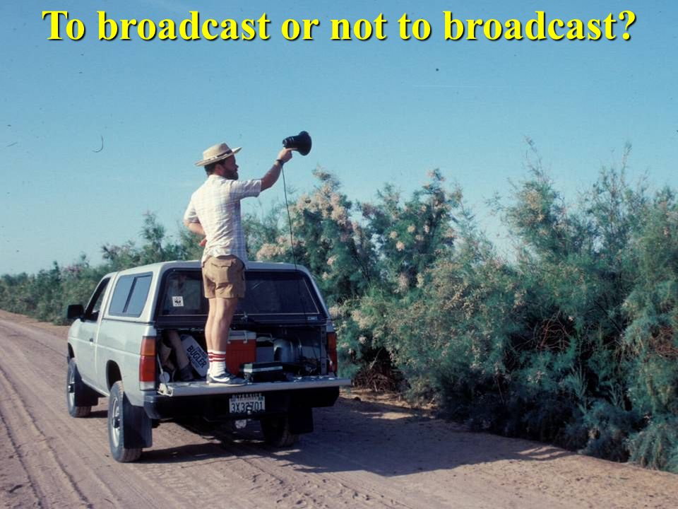 To broadcast or not to broadcast