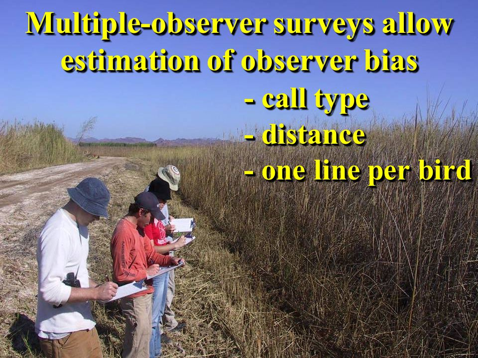 Multiple-observer surveys allow estimation of observer bias - call type - distance - one line per bird Multiple-observer surveys allow estimation of observer bias - call type - distance - one line per bird