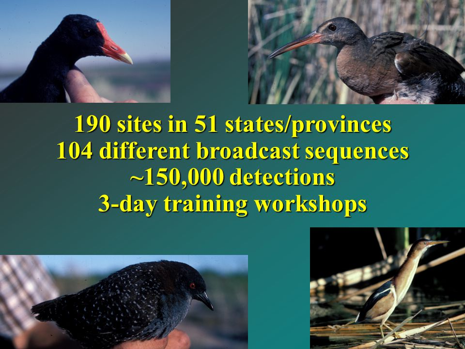 190 sites in 51 states/provinces 104 different broadcast sequences ~150,000 detections 3-day training workshops