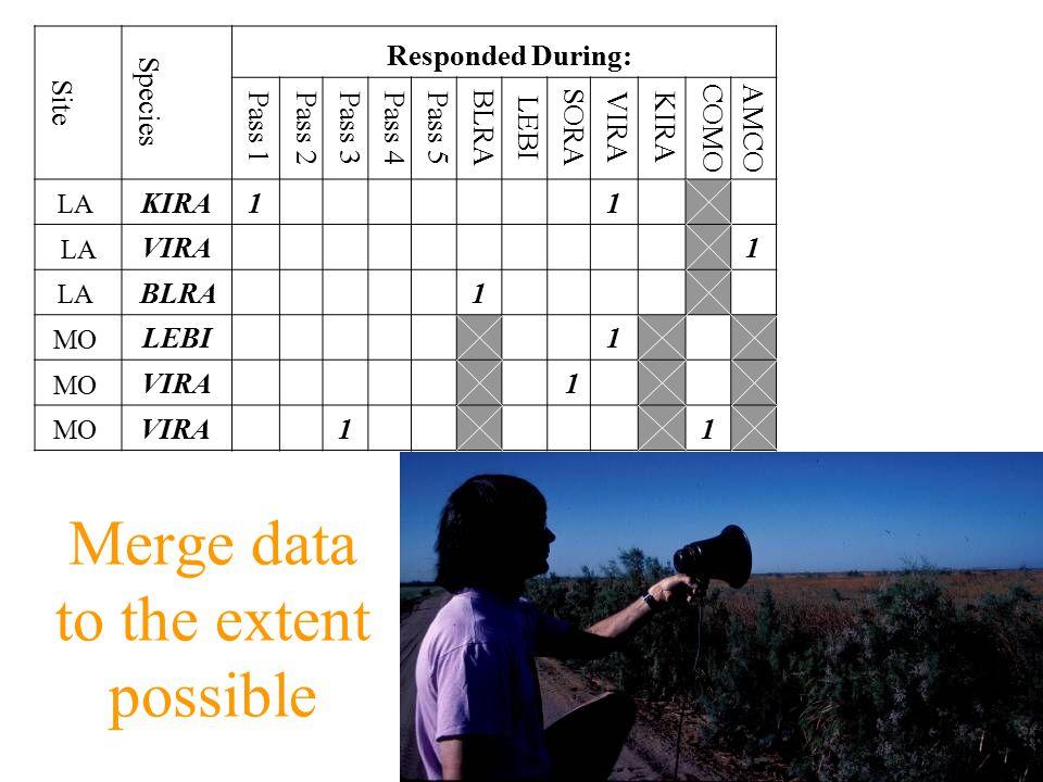 Compare first 9 min of each survey Site Species Responded During: Pass 1Pass 2Pass 3Pass 4Pass 5 BLRA LEBI SORA VIRAKIRA COMO AMCO LA KIRA1 1 LA VIRA 1 LA BLRA 1 MO LEBI 1 MO VIRA 1 MO VIRA 1 1