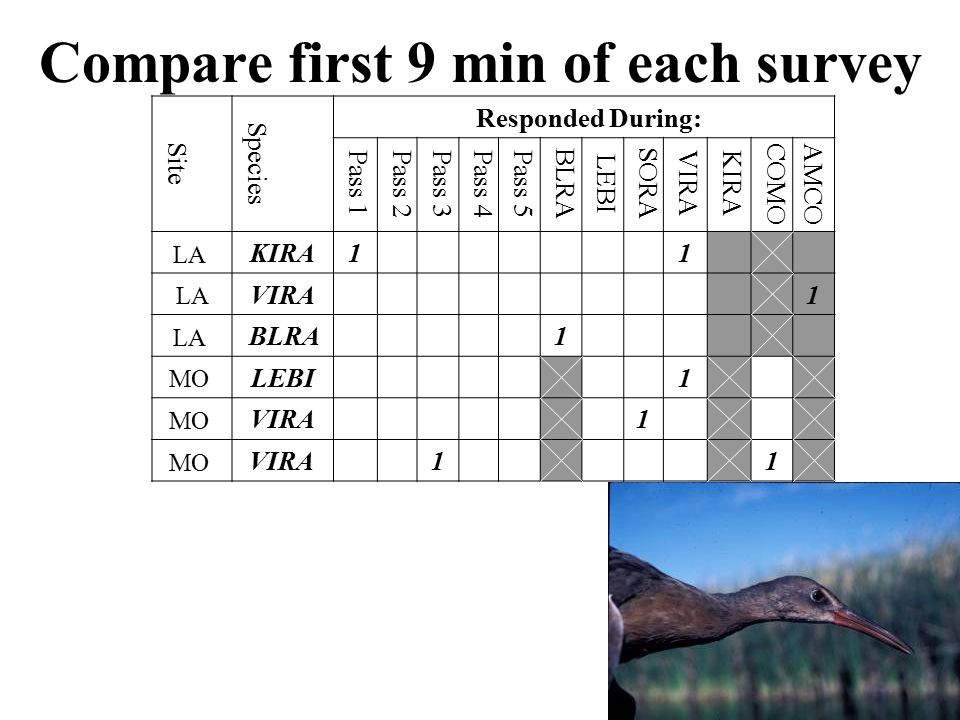 Compare first 9 min of each survey Site Species Responded During: Pass 1Pass 2Pass 3Pass 4Pass 5 BLRA LEBI SORA VIRAKIRA COMO AMCO LA KIRA1 1 LA VIRA