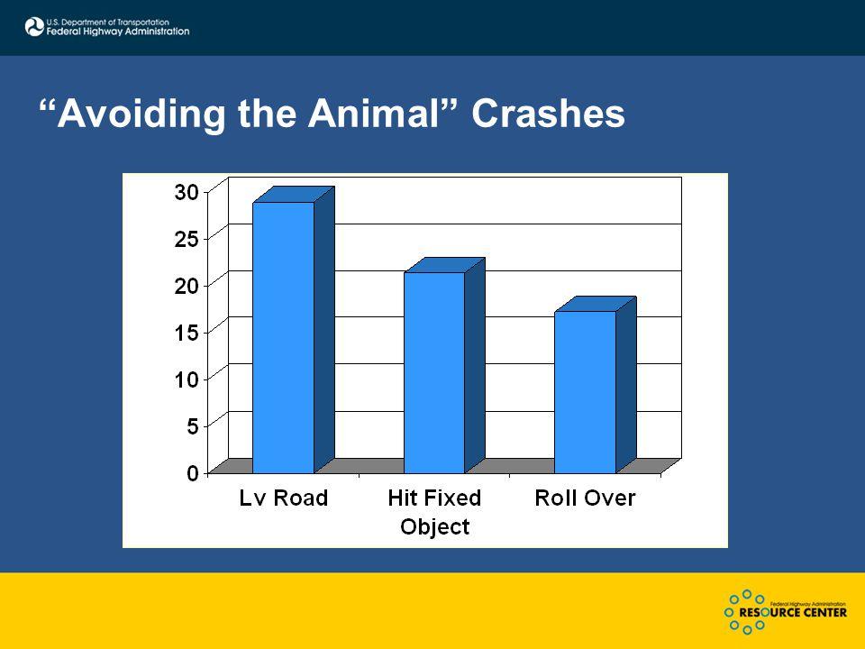 """Avoiding the Animal"" Crashes"