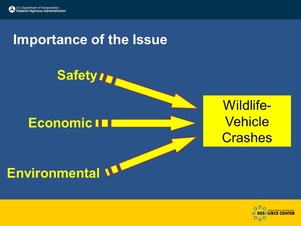 Importance of the Issue Safety Economic Environmental Wildlife- Vehicle Crashes