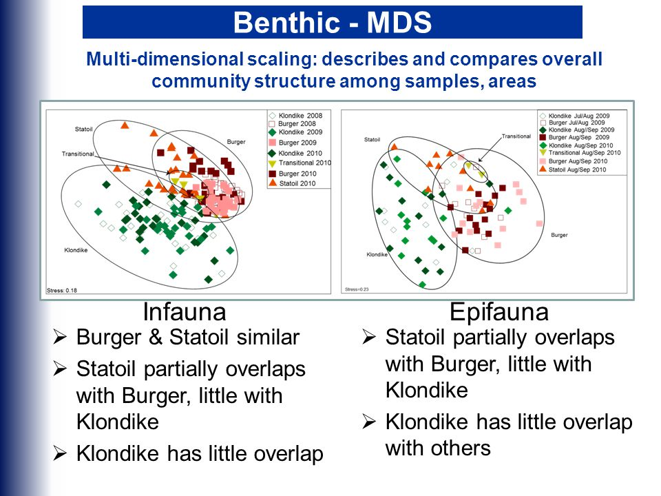 Benthic - MDS  Burger & Statoil similar  Statoil partially overlaps with Burger, little with Klondike  Klondike has little overlap  Statoil partially overlaps with Burger, little with Klondike  Klondike has little overlap with others InfaunaEpifauna Multi-dimensional scaling: describes and compares overall community structure among samples, areas