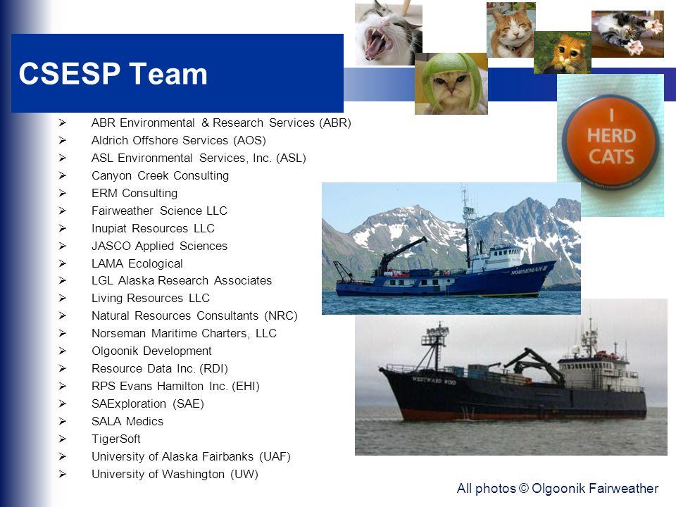 CSESP Team  ABR Environmental & Research Services (ABR)  Aldrich Offshore Services (AOS)  ASL Environmental Services, Inc.
