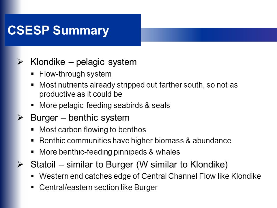 CSESP Summary  Klondike – pelagic system  Flow-through system  Most nutrients already stripped out farther south, so not as productive as it could be  More pelagic-feeding seabirds & seals  Burger – benthic system  Most carbon flowing to benthos  Benthic communities have higher biomass & abundance  More benthic-feeding pinnipeds & whales  Statoil – similar to Burger (W similar to Klondike)  Western end catches edge of Central Channel Flow like Klondike  Central/eastern section like Burger